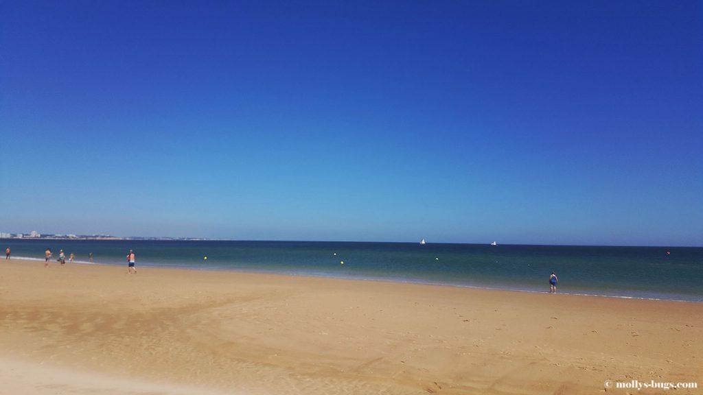 Meia_Praia_2