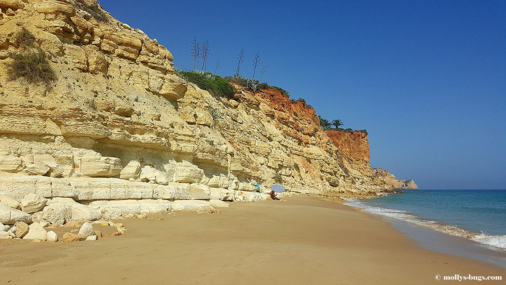 Praia_do_porto_de_mos