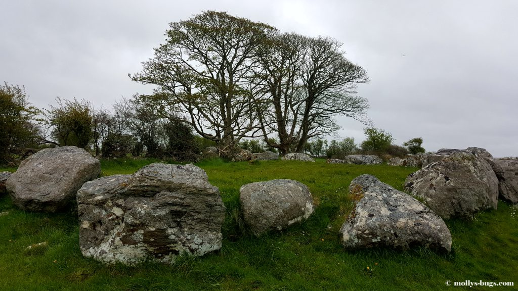 carrowmore-3