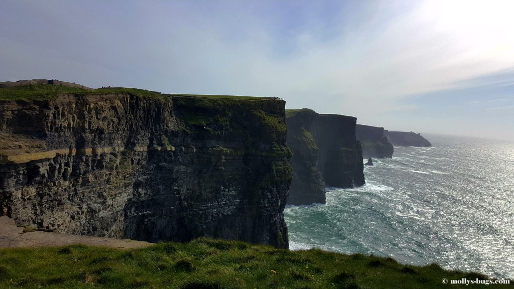 cliffs-of-moher-6