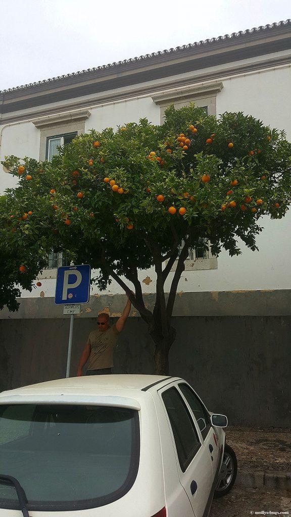 faro_portugal