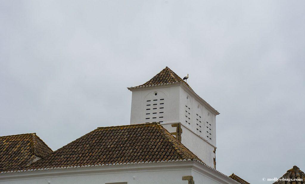 faro_portugal_14