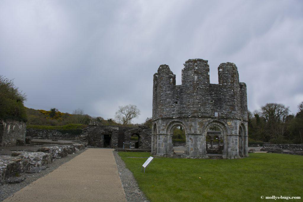 mellifont-abbey-1