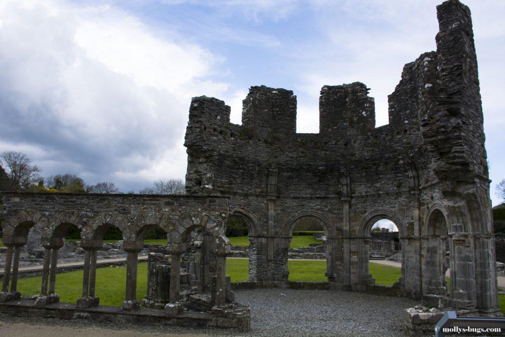 mellifont-abbey-2