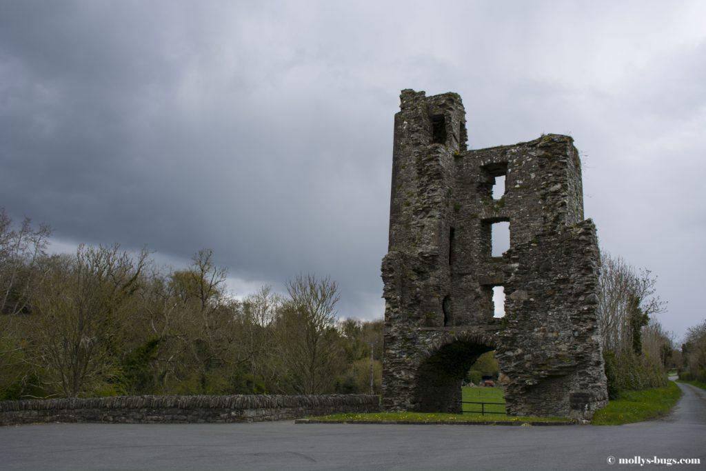 mellifont-abbey-3