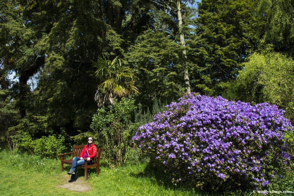 mount-usher-gardens-5