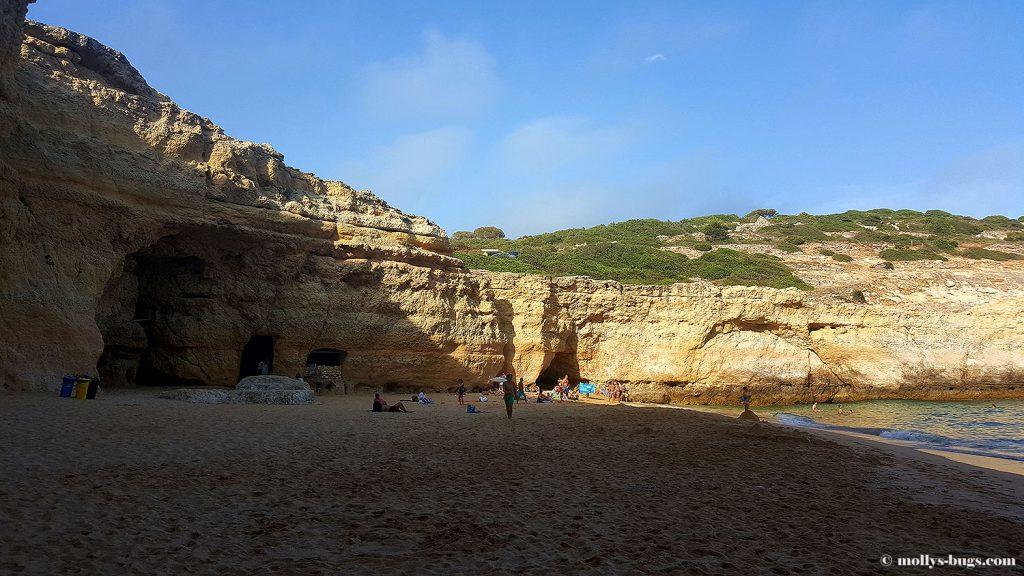 praia_do_carvalho_5