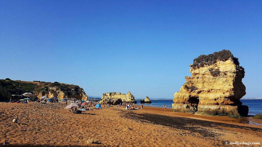 praia_dona_ana_4