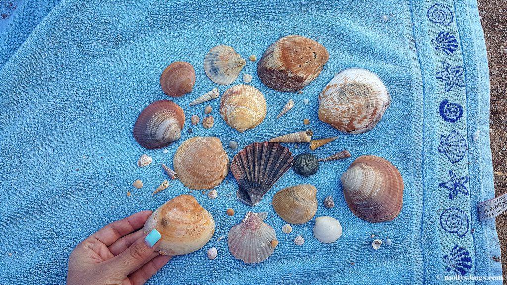 praia_dona_ana_7