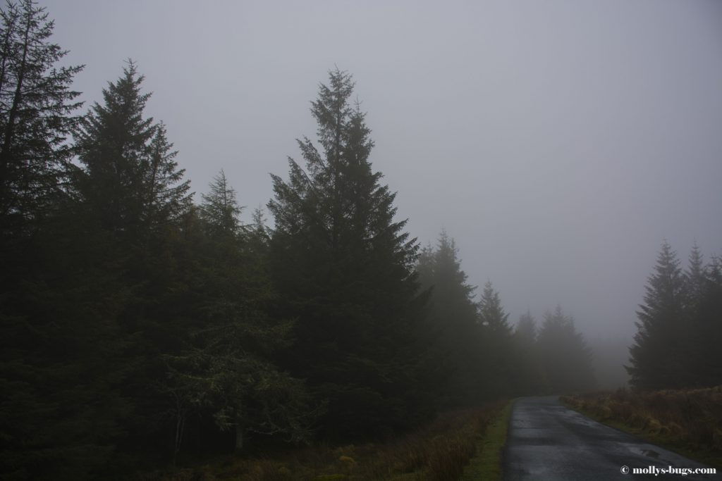 wicklow-mountains-1