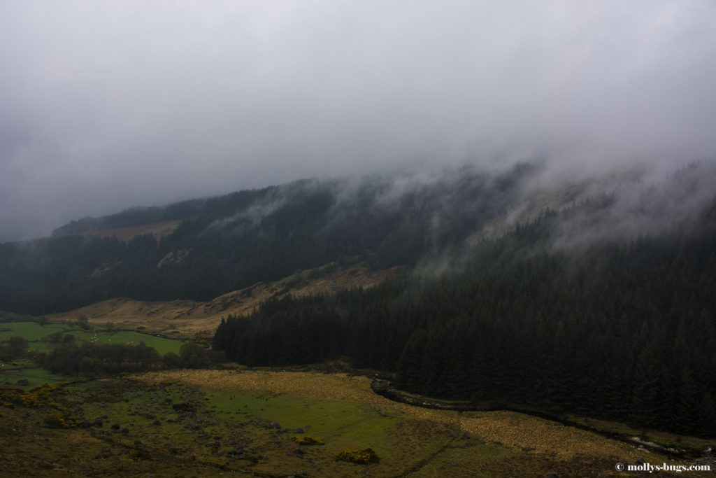 wicklow-mountains-3