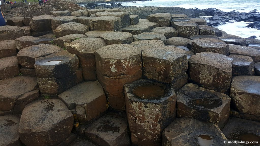 Giant's_causeway_13