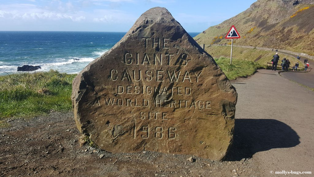 Giant's_causeway_2