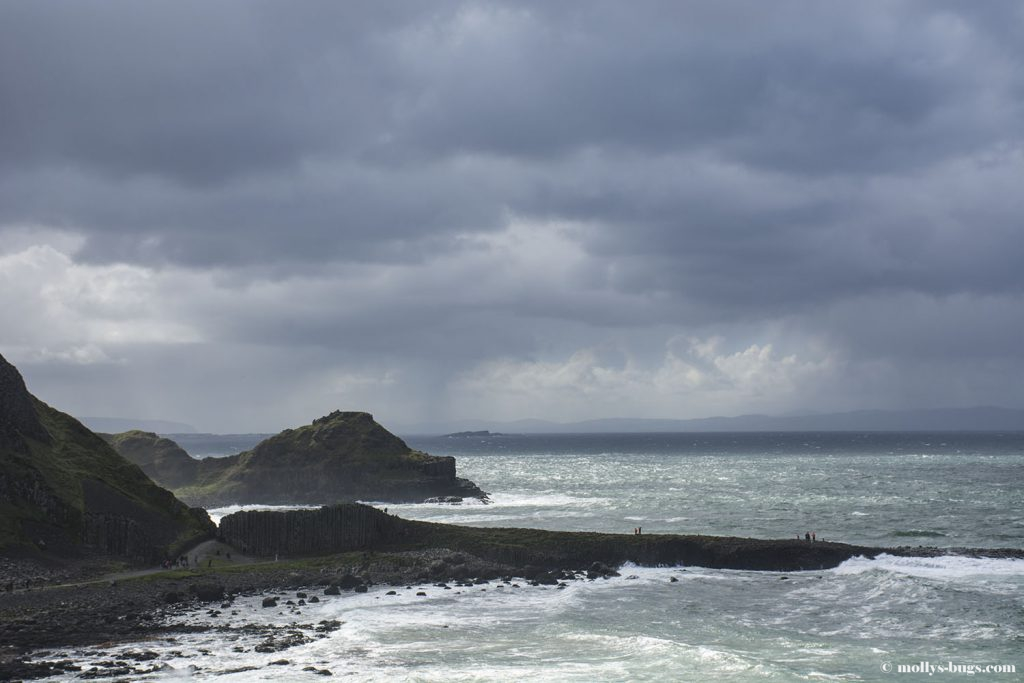 Giant's_causeway_9