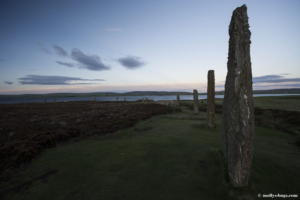ring_of_brodgar_3