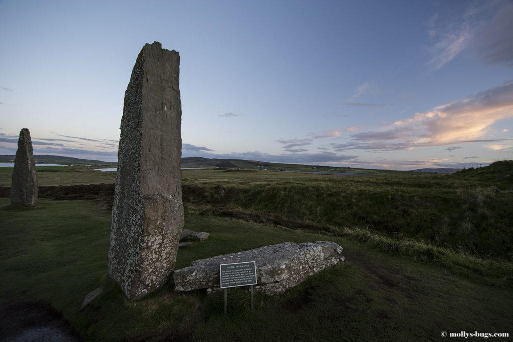 ring_of_brodgar_4