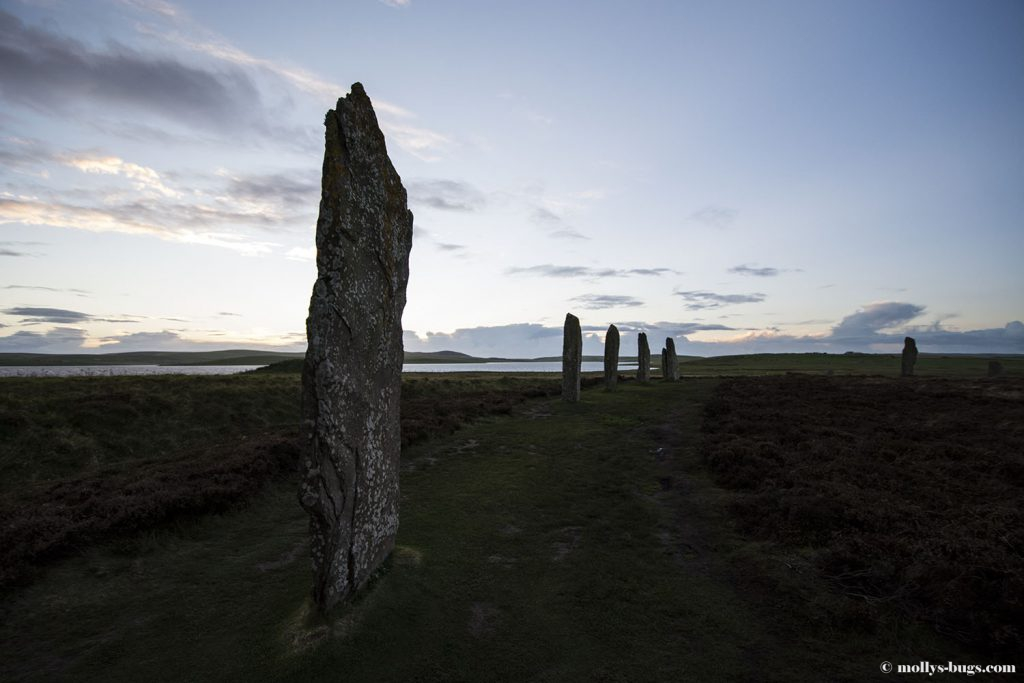 ring_of_brodgar_5