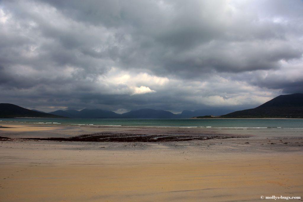 harris_beach1