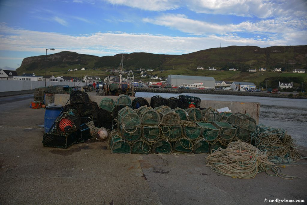 uig-ferry1