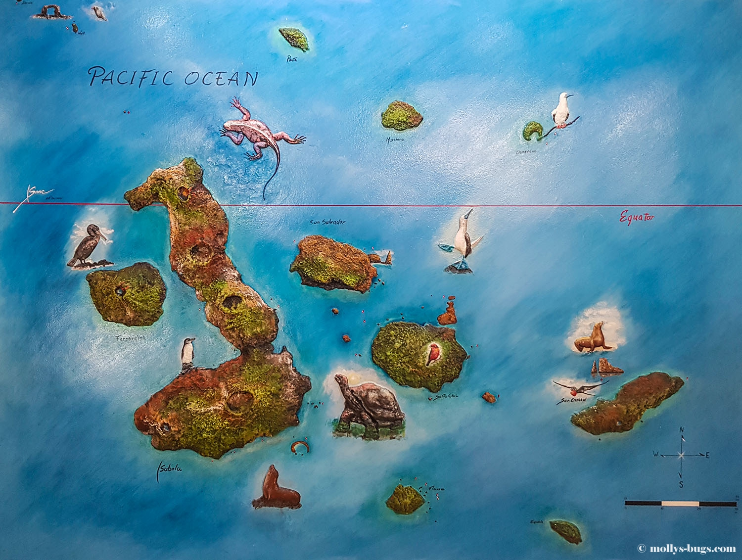 Life on the Galápagos Islands | Molly's bugs The Galapagos Islands Map on